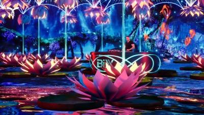 Lotus-pond-4