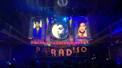 paradiso-projection-mapping-2